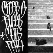 Cross a Black Cat's Path