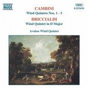 CAMBINI: Wind Quintets Nos. 1-3 / BRICCIALDI: Wind Quintet in D major