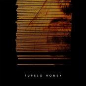 Tupelo Honey (2004-2005)