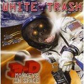 3d Monkeys in Space