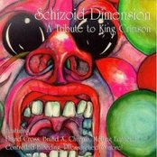 Schizoid Dimension: A Tribute to King Crimson