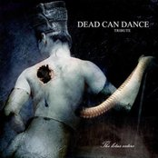 The Lotus Eaters: Tribute to Dead Can Dance (disc 2)