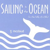 Sailing in the Ocean (in the Belly of a Fish)
