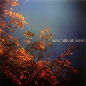 Never Shout Never EP
