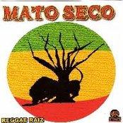 Reggae Raiz