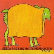 Andrew Bird And The Misterious Production Of Eggs