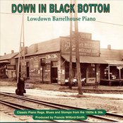 Down In Black Bottom:  Lowdown Barrelhouse Piano