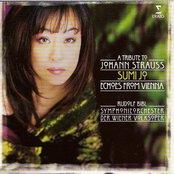 Strauss : Echoes from Vienna