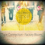Factory Bloom