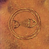 Fishbone 101: Nuttasaurusmeg Fossil Fuelin' The Fonkay