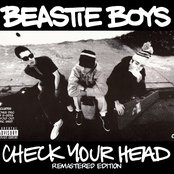 Check Your Head (Remastered Edition)