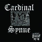 Cardinal Synne