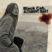 Altamont Diary