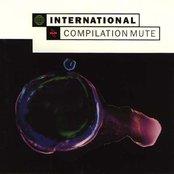 International: Compilation Mute