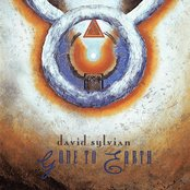 Gone to Earth (disc 2)