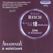 Music for 18 Musicians (Amadinda & Musicians)