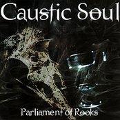 Parliament of Rooks