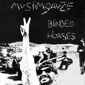 Blinded Horses