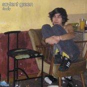 soylent green (Germany) - rough mixes (2008)