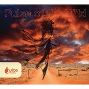 Pulse of the Wild