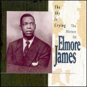 The Sky Is Crying - The History Of Elmore James