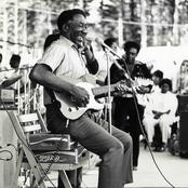 Muddy Waters setlists
