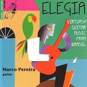 Elegia - Virtuoso Guitar Music From Brasil