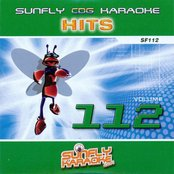 Sunfly Hits, Vol. 112