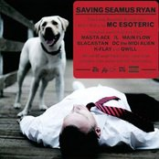 Saving Seamus Ryan
