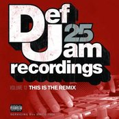 Def Jam 25, Vol. 12 - This Is The Remix