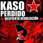 Despierta revolución