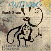 Squid Brain