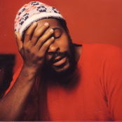 Marvin Gaye - Ain't No Mountain High Enough Songtext und Lyrics auf Songtexte.com