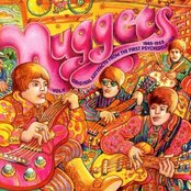 Nuggets: Original Artyfacts From the First Psychedelic Era, 1965-1968 (disc 4)