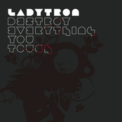 album Destroy Everything You Touch by Ladytron