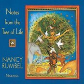 Notes From The Tree Of Life