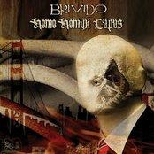 split LP with Homo Homini Lupus