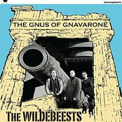 The Gnus of Gnaverone