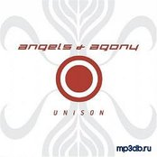 Unison Limited Edition
