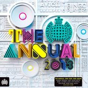 Ministry of Sound: The Annual 2013