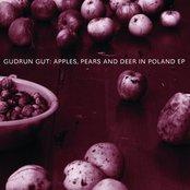 Apples, Pears & Deer In Poland