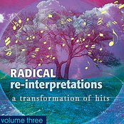 Radical Re-Interpretations : A Transformation of Hits Volume 3