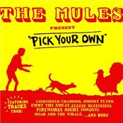 The Mules Present Pick Your Own