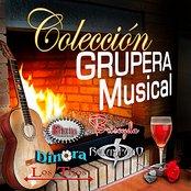 Coleccion Grupera Musical