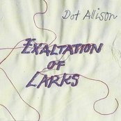 Exaltation Of Larks