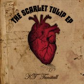 The Scarlet Tulip