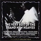 The Very Best Of The Brand New Heavies