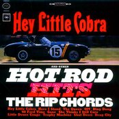 Hey Little Cobra