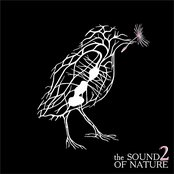The Sound of Nature 2