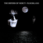 album Floodland by The Sisters of Mercy